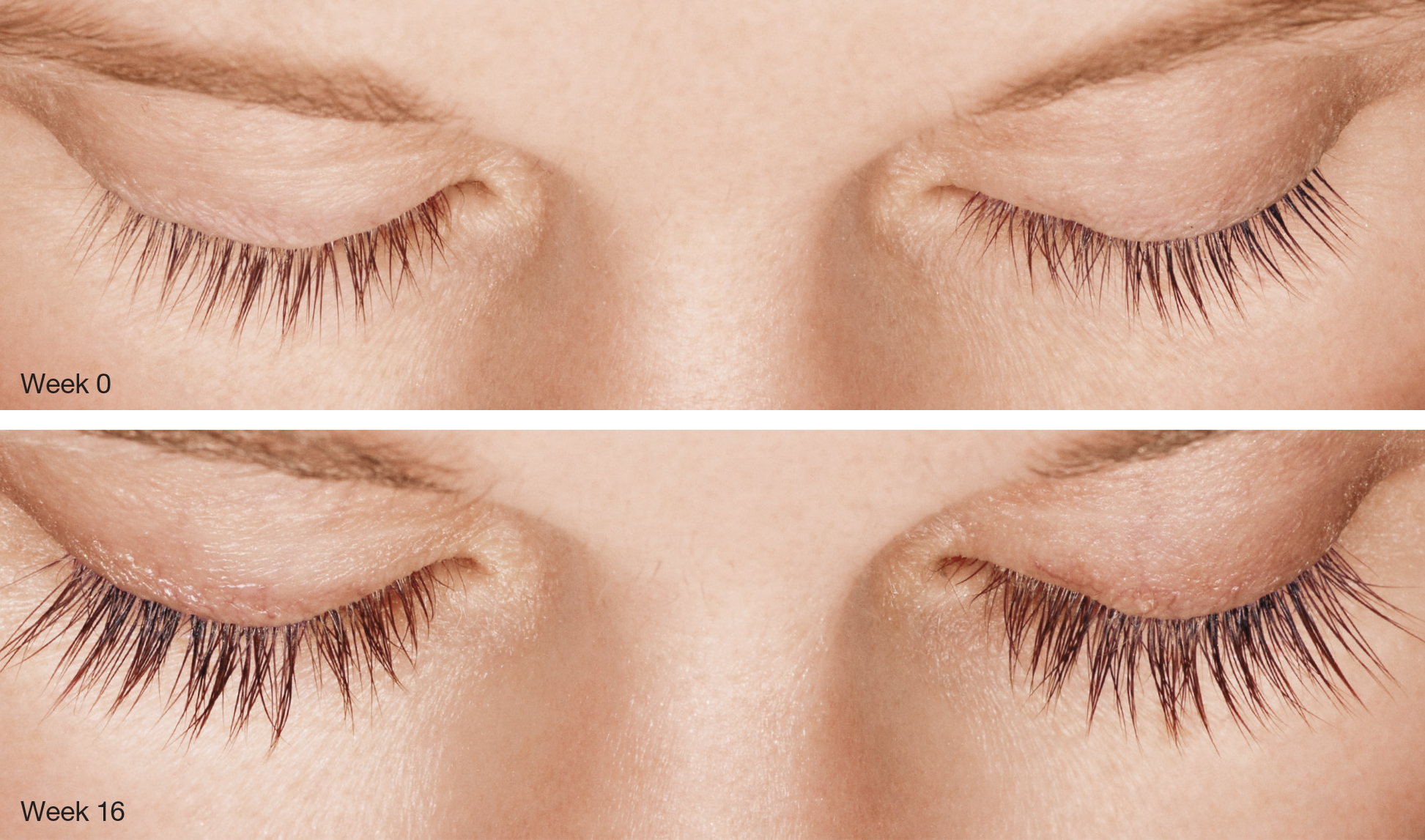Lash Lift after 16 weeks- Rejuvenation Med Spa